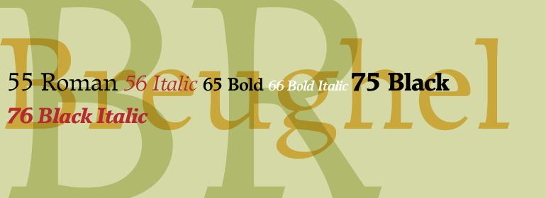 Breughel Super Family [6 Fonts] | The Fonts Master