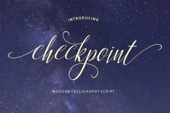 Checkpoint [1 Font] | The Fonts Master