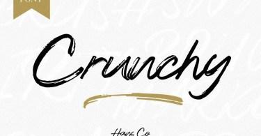 Crunchy [1 Font] | The Fonts Master
