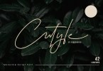 Cutyle [1 Font] | The Fonts Master