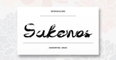 Sakenos [1 Font] | The Fonts Master