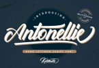 Antonellie [2 Fonts] | The Fonts Master