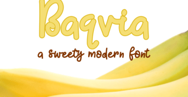 Baqvia [1 Font] | The Fonts Master