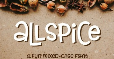 Allspice [2 Fonts] | The Fonts Master