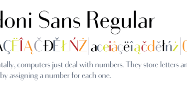 Bodoni Sans Super Family [20 Fonts]