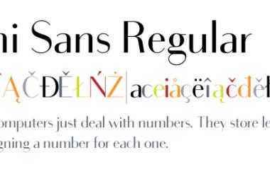 Bodoni Sans Super Family [20 Fonts]