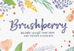 Brushberry [4 Fonts] | The Fonts Master