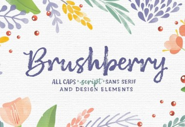 Brushberry [4 Fonts]