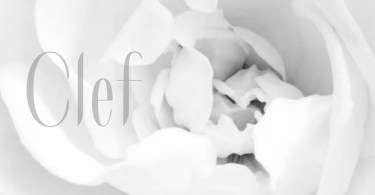 Clef [1 Font] | The Fonts Master