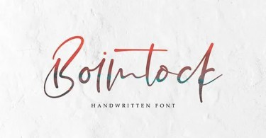 Boimtock [1 Font] | The Fonts Master