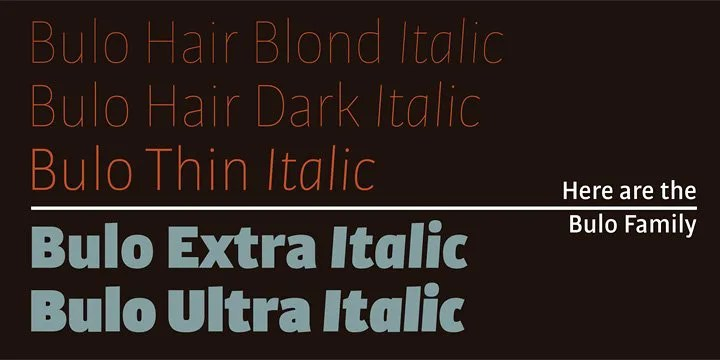 Bulo Super Family [20 Fonts] | The Fonts Master