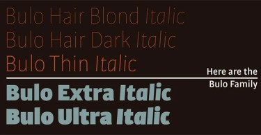 Bulo Super Family [20 Fonts]