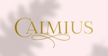 Calmius Super Family [14 Fonts]