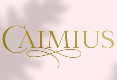 Calmius Super Family [14 Fonts]
