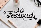 Feedback Script [1 Font] | The Fonts Master