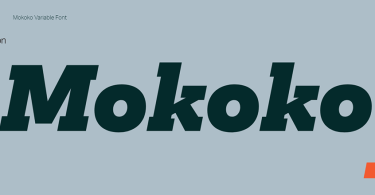 Mokoko Super Family [14 Fonts] | The Fonts Master