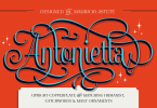Antonietta Super Family [7 Fonts] | The Fonts Master