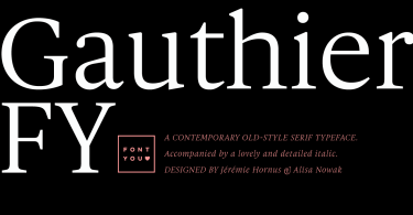 Gauthier Fy Super Family [6 Fonts] | The Fonts Master