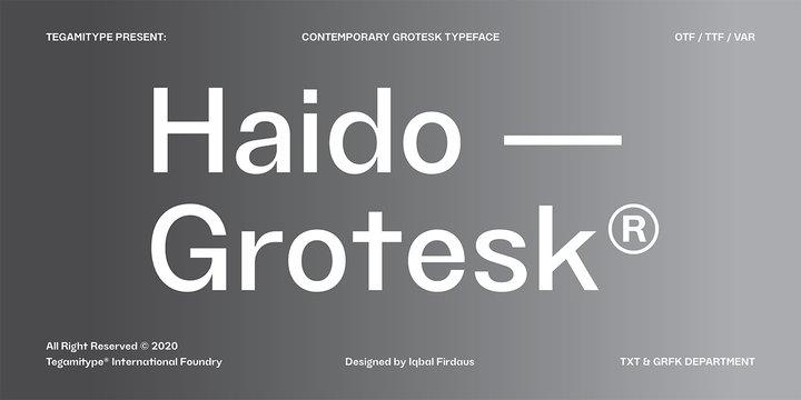 Tg Haido Grotesk Super Family [18 Fonts] | The Fonts Master