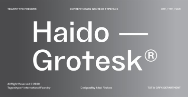 Tg Haido Grotesk Super Family [18 Fonts] | The Fonts Master