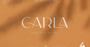 Carla Sans [4 Fonts] | The Fonts Master
