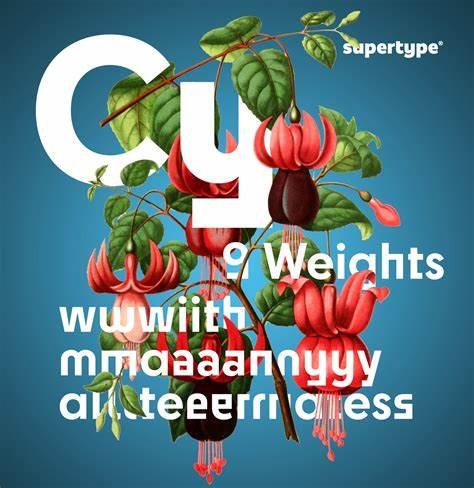 Cy Super Family [9 Fonts] | The Fonts Master