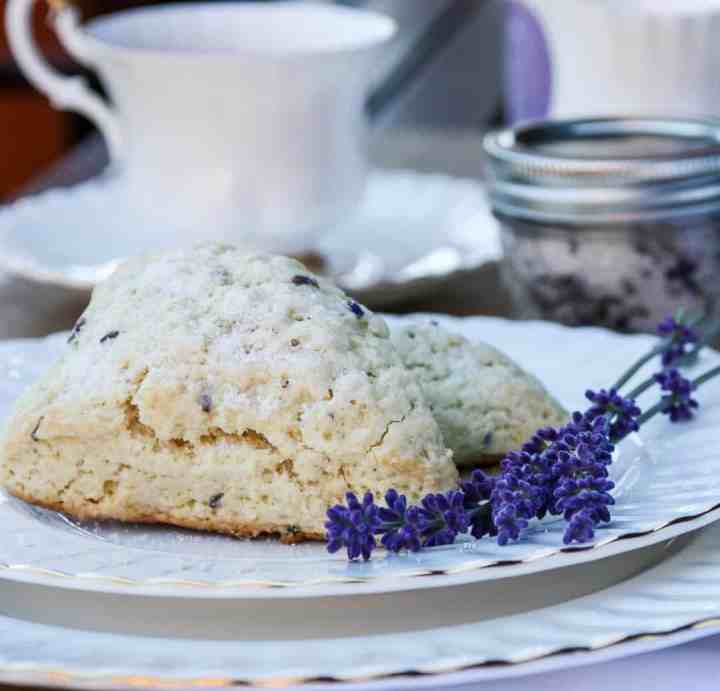 A close up of scones on a plate, with lavendar sprigs