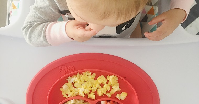 What Lavinia Ate: 12 Month Old Meal Ideas