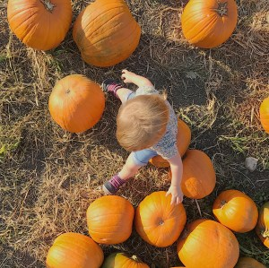 Pumpkin Patching with Friends