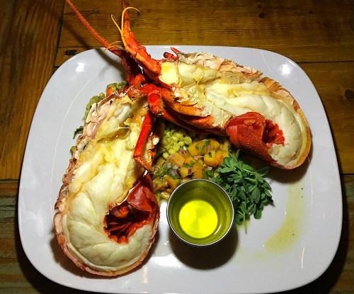 Garden Kitchen Spiny Lobster