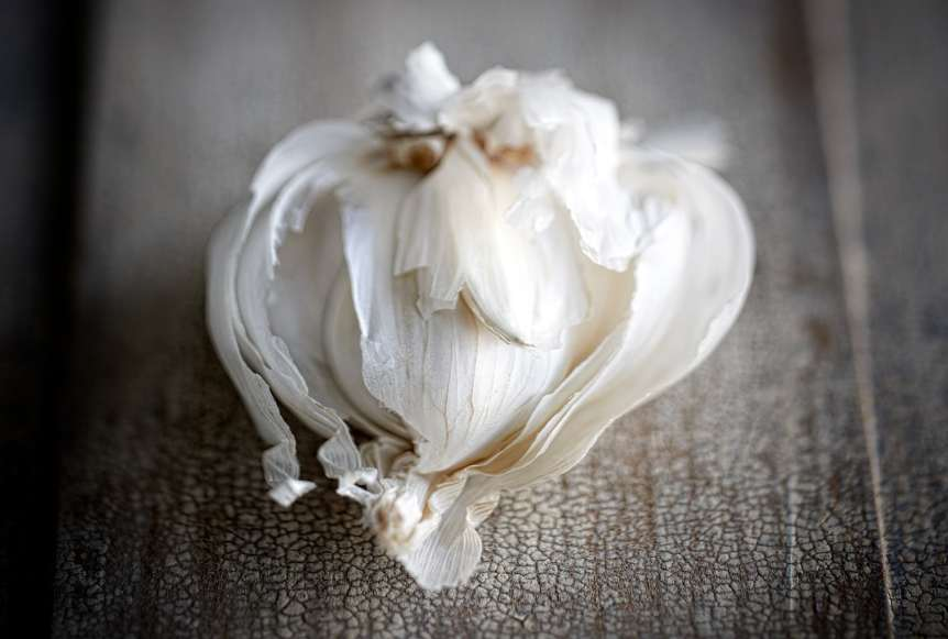 commercial food, food photography, advertising, restaurant, editorial, cookbooks, cook books, Dallas, Houston, food styling, prop styling, still life, garlic, Ralph Smith Still Life Photography
