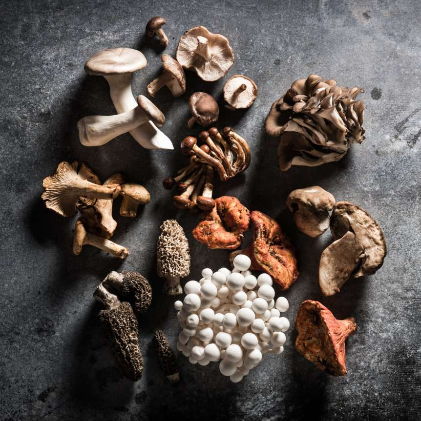 Manny Rodriguez Still Life Photography, commercial food, food photography, advertising, restaurant, editorial, cookbooks, cook book, mushrooms