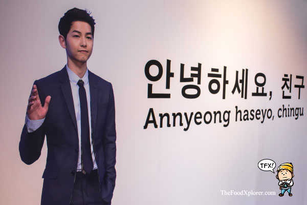 Annyeong-Haseyo-Chingu-Joongki-oppa--Bandung