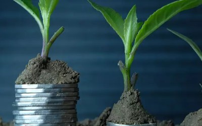 Sustainable business practices for SMEs