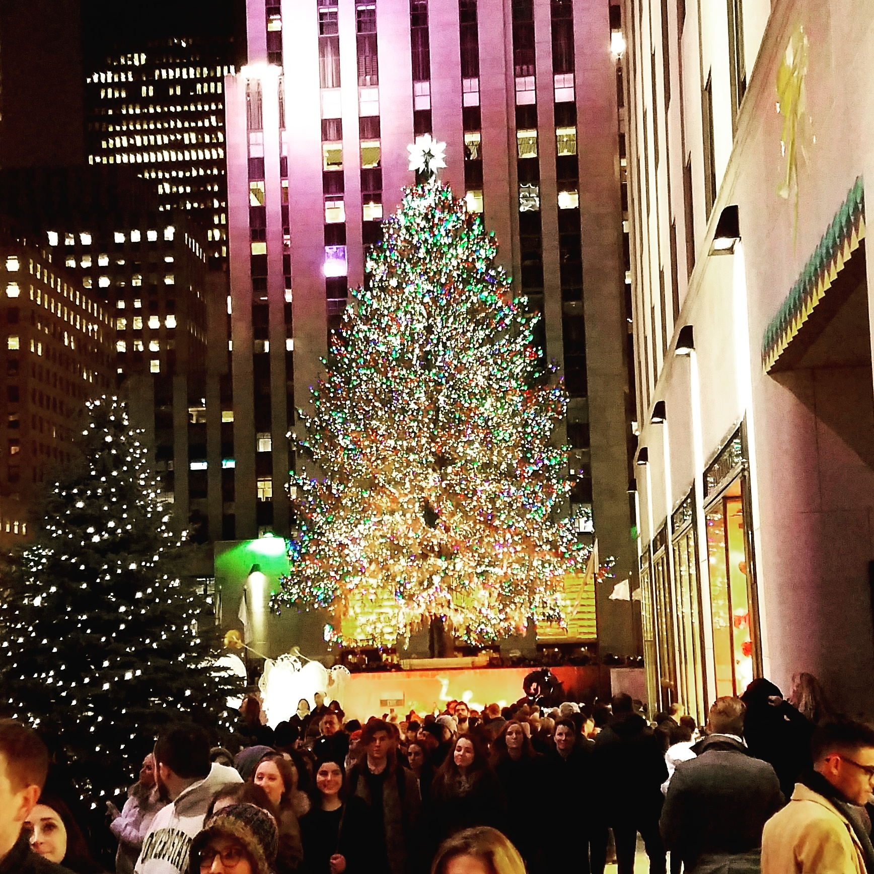 14 Photo to Inspire You to Visit New York at Christmas