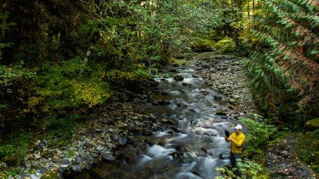 Still Creek Web Feature 7.28.16