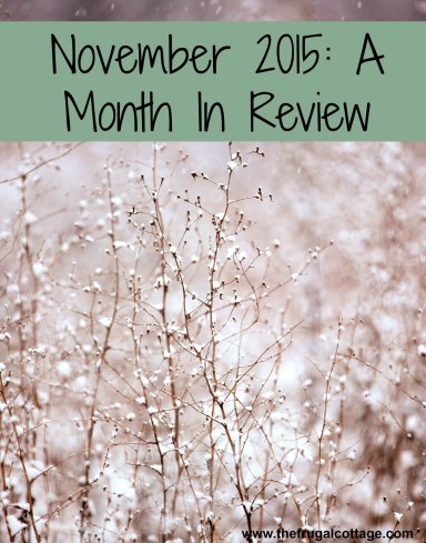 November 2015 - A Month In Review