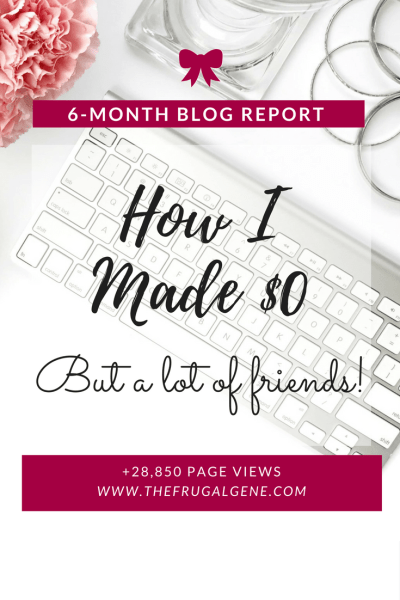 6 month blog report