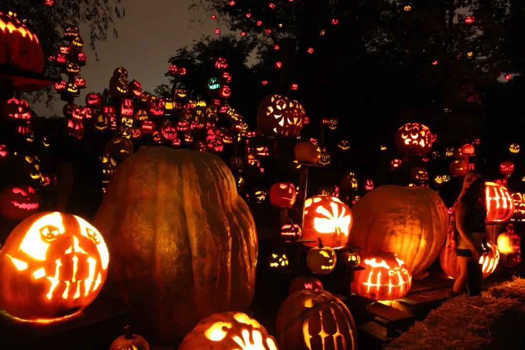 Providence Jack O' Lanterns