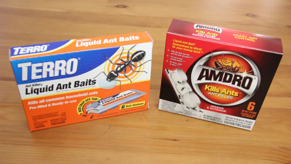 How to Get Rid of Ants in Your Home: Terro vs. Amdro Liquid Ant Bait