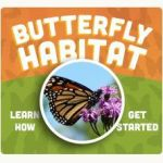 Free Butterfly Garden Kit + Win a Disney Vacation from National Wildlife Federation