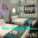How to Have a Package Shipped to Your Disney World Resort Hotel – Tips & Tricks