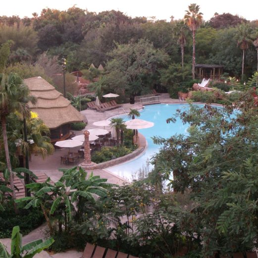 Disney's Animal Kingdom Lodge Pool