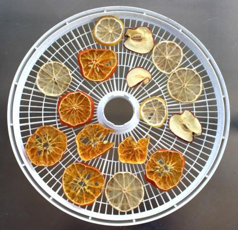 fruit dehydrator