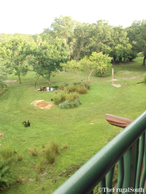 How To Get Best Room View Animal Kingdom Lodge
