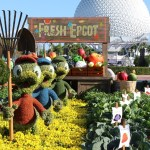 Tips for Visiting Epcot Flower & Garden Festival With Kids!