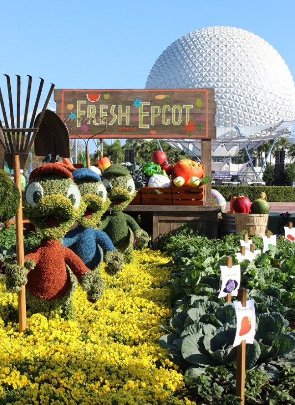 duck topiaries epcot flower and garden festival with kids