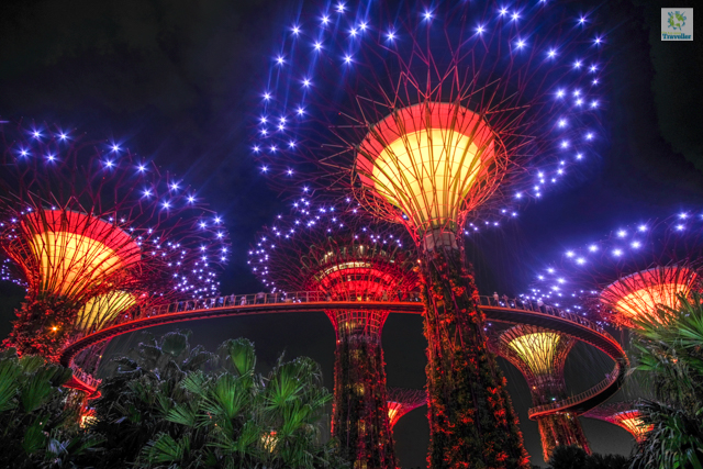 Garden Rhapsody at Gardens by the Bay
