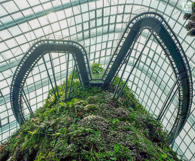 The Cloud Forest Conservatory.