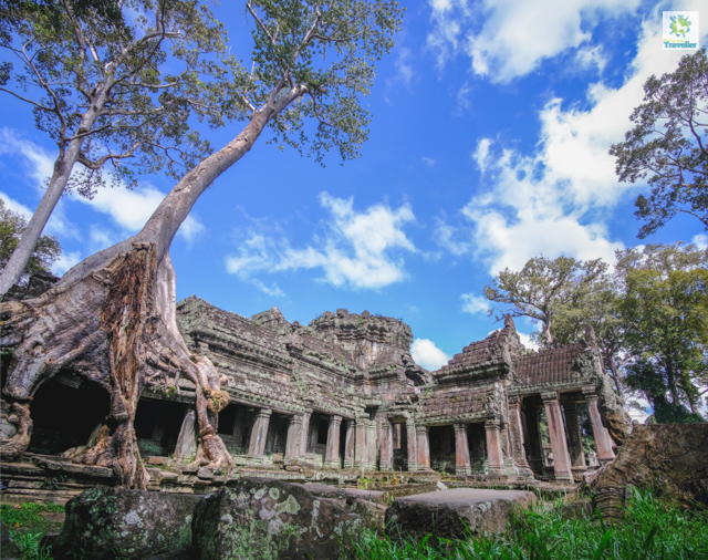 Preah Khan temple, arguably one of the most beautiful in all of Angkor.